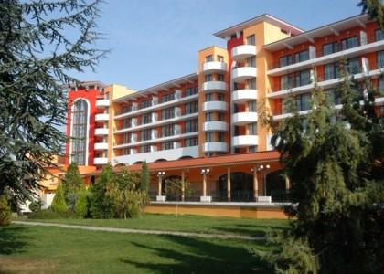 Hrizantema-sunny-beach-litoral-bulgaria (1)