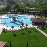 Hrizantema-sunny-beach-litoral-bulgaria (6)
